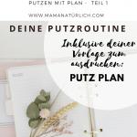 Putzen mit Plan Teil 1